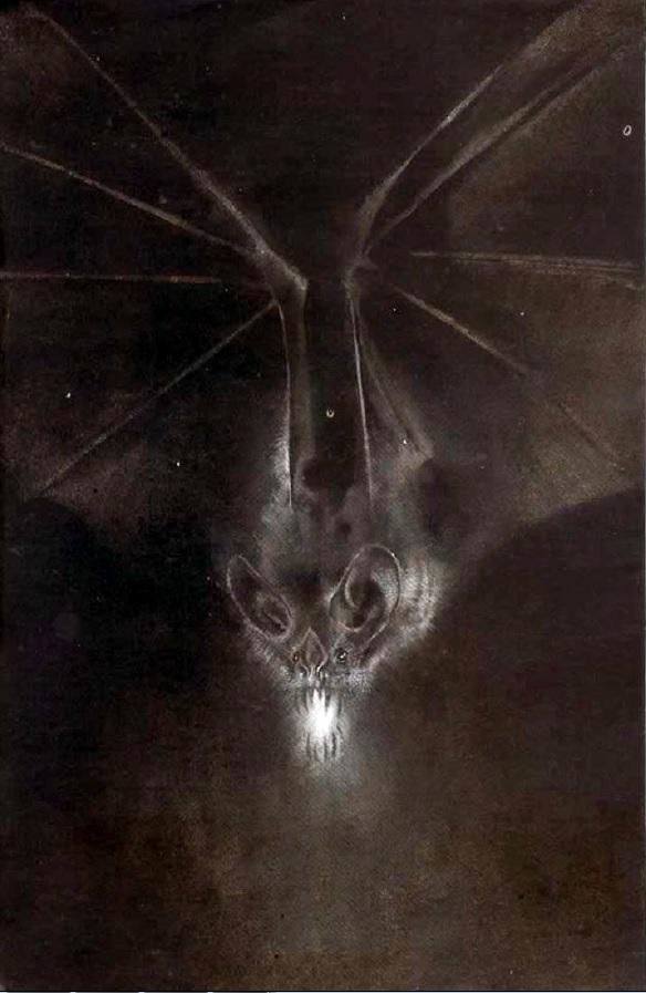 Um Morcego que se tornou mito e que se tornou humano